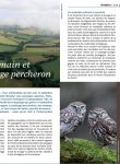 bocage_percheron